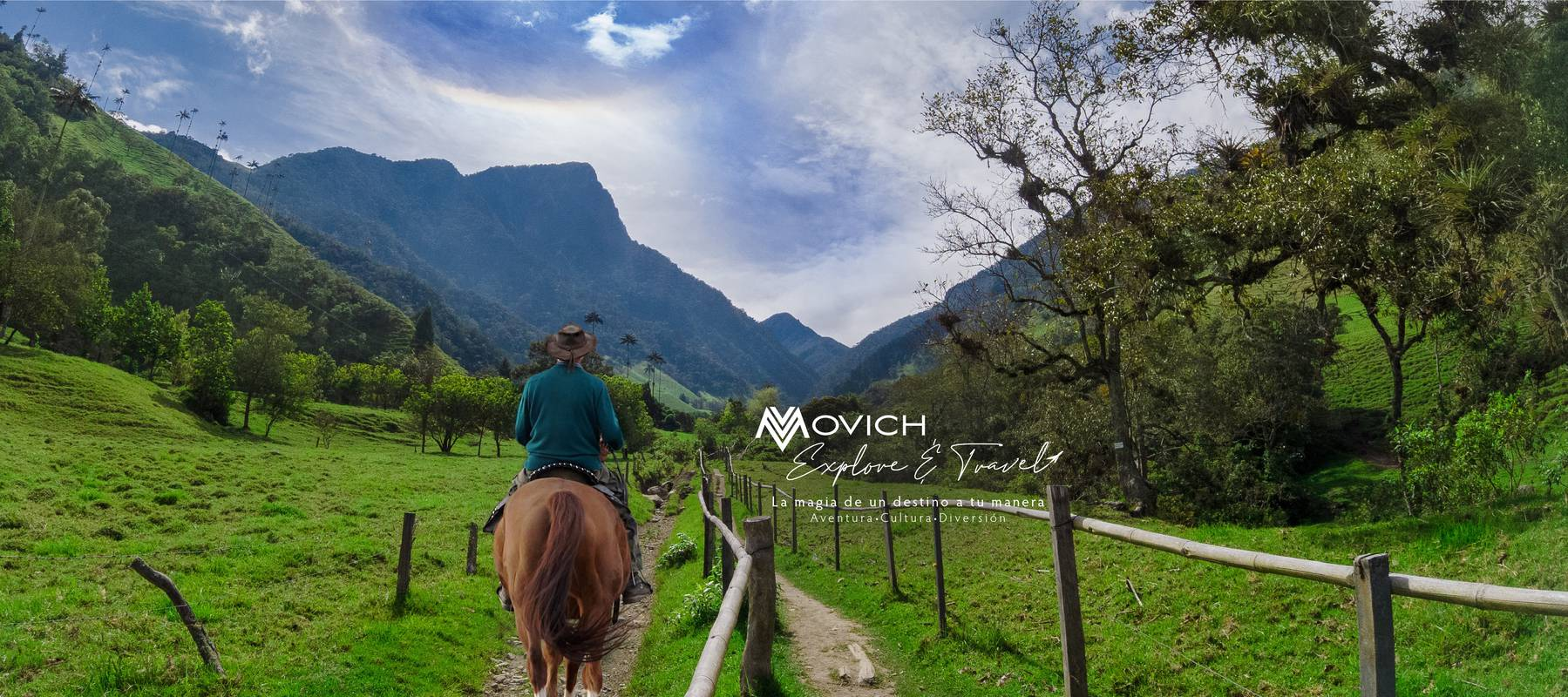 Explore & Travel Movich Hotels